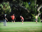 View larger image of Couples golfing at DISCOVER CRYSTAL RIVER image #9