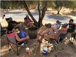 View larger image of Campers relaxing under tree at LEMON COVE VILLAGE RV PARK image #4
