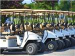 View larger image of Golf carts at CHESAPEAKE BAY KOA  SUNSET BEACH HOTEL image #12
