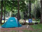 View larger image of Blue and gray tent pitched alongside wooden picnic table and hanging hammock at PIGEON RIVER CAMPGROUND image #4