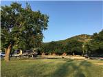 View larger image of Horse and pony in a corral by the river at ABOVE AND BEYOND RIVER RESORT RV PARK image #3