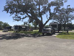 View larger image of Trailers and RVs camping at BOOMTOWN CASINO RV PARK image #3