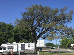 View larger image of RV camping at park at BOOMTOWN CASINO RV PARK image #10