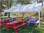 View larger image of Colorful picnic tables under a canopy at INDIAN SPRINGS RESORT  RV image #4