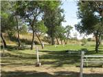 View larger image of Grassy RV sites with shade trees at INDIAN SPRINGS RESORT  RV image #6
