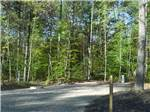 View larger image of Gravel RV spot with wooden picnic table among tall trees at WESTWARD SHORES COTTAGES  RV RESORT image #3