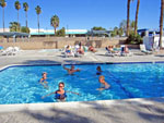View larger image of People swimming in pool at CATHEDRAL PALMS RV RESORT image #4