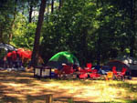 View larger image of Tents camping at HOLLY LAKE CAMPSITES image #6