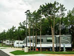 View larger image of Row of parked RVs backed in at WANDERLUST CROSSINGS RV PARK image #12