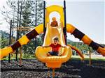View larger image of Kids playing in the playground at WEST GLACIER RV PARK  CABINS image #7