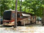 View larger image of Brown and red motorhome in trees  at LAKE  SHORE RV image #1