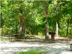 View larger image of Picnic table at campsite at LAKE  SHORE RV image #6