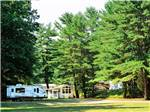 View larger image of Trailer camping at TUXBURY POND RV RESORT image #1