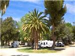 View larger image of Trailers camping at campsite at SOLEDAD CANYON RV  CAMPING RESORT image #9