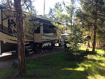 View larger image of Motorhome with slide out camping in woods at BROAD RIVER CAMPGROUND  RV PARK image #6