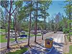 View larger image of Road leading into campgrounds at BELLE RIDGE CAMPGROUND image #4