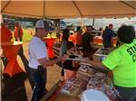 View larger image of RVs and trailers at campground at CLEMSON RV PARK AT THE GROVE image #6
