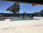 View larger image of Swimming pool and deck at DESERT SANDS RV PARK image #4