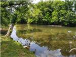 View larger image of A shed holding the kayaks at DUVALL IN THE SMOKIES RV CAMPGROUND  CABINS image #3