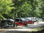 View larger image of Row of RVs under the trees at JENNYS CREEK FAMILY CAMPGROUND image #6