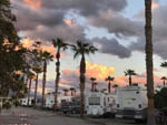 View larger image of Row of RVs at sunset at SHADY HAVEN RV PARK image #6
