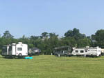 View larger image of Trailers parked in a grassy area in front of trees at EASTERN PINES RV PARK image #2