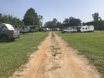 View larger image of Gravel road with RVs on grass at EASTERN PINES RV PARK image #5