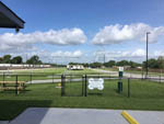 View larger image of View of the grassy dog park at TEXAS RV PARK image #3