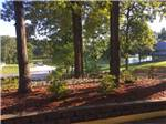View larger image of Far distance view of the boat dock at CROWN LAKE RV RESORT image #4