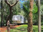 View larger image of Cozy secluded campsite at ROCK CRUSHER CANYON RV RESORT image #4