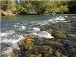 View larger image of Close view of the river at RIVER REFLECTIONS RV PARK  CAMPGROUND image #1