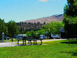 View larger image of Picnic table at campsite at GOLD RANCH CASINO  RV RESORT image #6