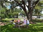 View larger image of WATERS EDGE RV RESORT at ZEPHYRHILLS FL image #2