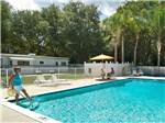 View larger image of WATERS EDGE RV RESORT at ZEPHYRHILLS FL image #4