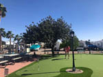 View larger image of Man putting on putting green at PHOENIX METRO RV PARK image #10