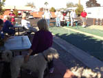 View larger image of People watching shuffleboard at PHOENIX METRO RV PARK image #12