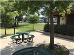 View larger image of A sitting area under a tree at THE CREEKS GOLF  RV RESORT image #3