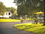 View larger image of Girl walking dogs at LAZYDAYS RV RESORT image #5