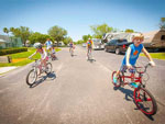 View larger image of Family biking at LAZYDAYS RV RESORT image #10