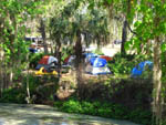 View larger image of Tents and RV camping at WEKIVA FALLS RV RESORT image #10