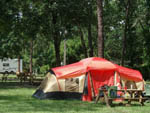 View larger image of Tent and RV camping at WEKIVA FALLS RV RESORT image #11