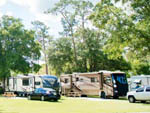 View larger image of RVs camping at WEKIVA FALLS RV RESORT image #12