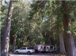 View larger image of Good Sam sign leading into Park at EAGLE TREE RV PARK image #1