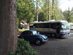 View larger image of RV parked at campsite at EAGLE TREE RV PARK image #9