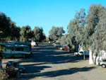 View larger image of RVs and trailers at campground at MOON RIVER RV RESORT image #3