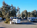 View larger image of Trailers and RVs camping at MOON RIVER RV RESORT image #4