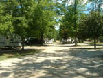 View larger image of Shaded gravel road at MAGNOLIA RV PARK  CAMPGROUND image #5