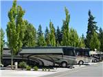 View larger image of RVs parked at campsite at MAPLE GROVE RV RESORT image #4