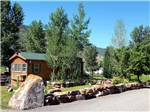 View larger image of One of the rental rustic cabins at AUNT SARAS RIVER DANCE RV RESORT image #2