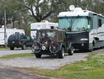 View larger image of RVs and trailers at campground at SHADY ACRES CAMPGROUND image #9
